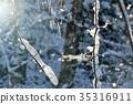 ฤดูหนาวน้ำแข็งและพายุหิมะ 35316911