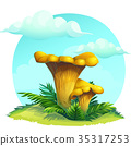 mushroom chanterelle under the sky with clouds 35317253
