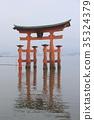 이츠쿠시마 신사, 도리이, 토리이 35324379