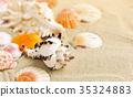 beach sand sea 35324883