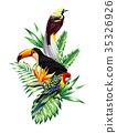 bird flower palm 35326926