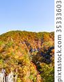 鳴子峽 楓樹 紅楓 35333603
