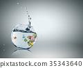 Exotic fish 35343640