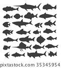 fish, silhouette, vector 35345954