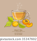 apricot, illustration, vector 35347602