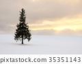 비 에이 · 겨울 35351143