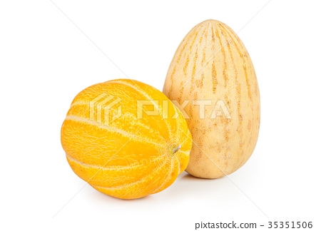 Melon 35351506
