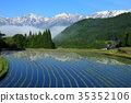 Hakuba Miyama反映在青木的Tanada 35352106