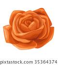 Rose flower floral Vector watercolor orange rose 35364374