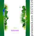 Tropical island circlet of beautiful plants 35372314