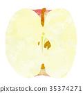 蘋果 水果 矢量 35374271