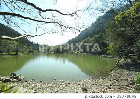 宜蘭明池國家森林遊樂區 35378048