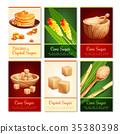 Cane Sugar Vertical Cards 35380398