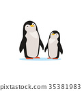Couple of penguins sitting on an ice, Arctic fauna 35381983