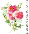 Flowers watercolor illustration 35382383