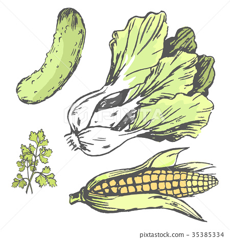 Vegetables at Random Colorful Graphic Illustration 35385334
