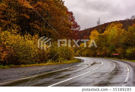turnaround on wet road through forest in autumn 35389285