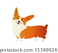 Happy dog Welsh Corgi. The style flat. 35389926