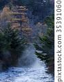 瀑布 楓樹 紅楓 35391060