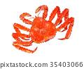 红王蟹 水彩画 螃蟹 35403066