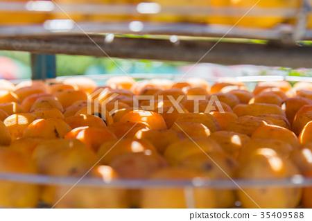 柿子 柿餅 曬柿餅 曬柿子 曬太陽 戶外 柿餅季 秋天 觀光工廠 美食 水果 季節 竹北 新竹 新埔 35409588