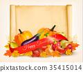 树叶 蔬菜 文本 35415014