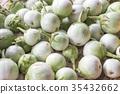 Closeup of eggplants or solanum laciniatum 35432662