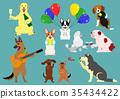狗派對顏色 35434422