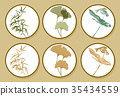 Bamboo, Ginkgo leaves, Monstera icon  vector  35434559