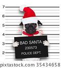 mugshot santa dog 35434658