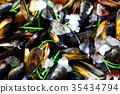 Mussels, molluscs, seaweed, sea plants, ice on old 35434794