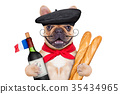 french wine dog 35434965