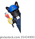 plumber dog with  wrench 35434993