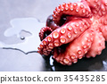 octopus, copy, space 35435285