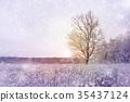winter season forest landscape 35437124
