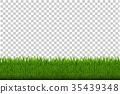 綠色 綠 青草 35439348