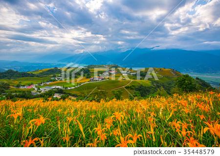 台灣花蓮富里六十石山金針花海Asia Taiwan Hualien Mountains 35448579