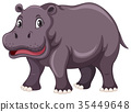 Cute hippo on white background 35449648