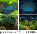 Four scenes of forest at night 35449807