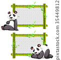 Two bamboo frames with cute panda 35449812