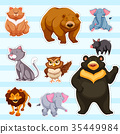 set animal sticker 35449984