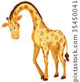 长颈鹿 微笑 笑脸 35450041