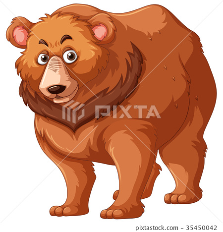 Grizzly bear with brown fur 35450042