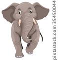 코끼리, 회색, 벡터 35450044