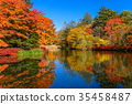 Autumn leaves reflected in the lake surface 35458487