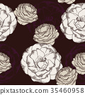 Purple and white rose flower. Vector illustration. 35460958