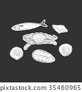 set of seafood ,isolated vector. 35460965