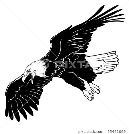 Flying Bald Eagle 35461066