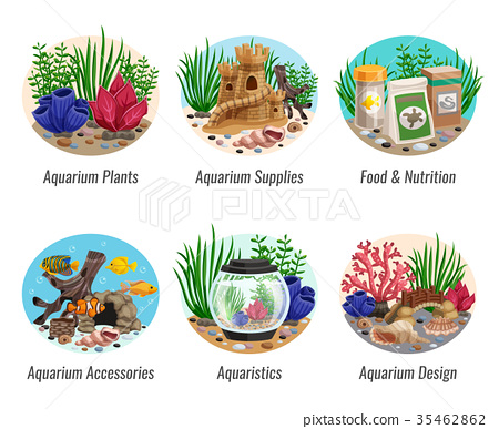Aquarium Compositions Set 35462862