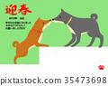 สุนัข,สุนัช,สัตว์ 35473698